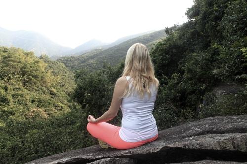 Neben der Praxis der Meditation kann auch ein wenig Theorie nicht schaden...