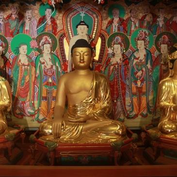 Templestay in Korea: Erfahrungsbericht